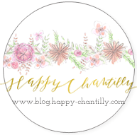 happy-chantilly-blog-macaron